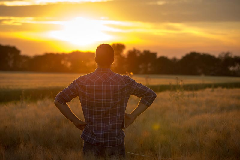 A man wearing a plaid shirt while standing in a field watching the sun rise